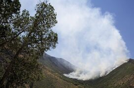 In this July 22, 2014 photo, a wildfire burns in Morgan County, Utah. Fire investigators believe lightning ignited the Tunnel Hollow Fire. Slightly cooler weather on Tuesday helped crews gain ground on the fire five miles east of the town of Morgan, Utah. (AP Photo/Standard-Examiner, Benjamin Zack) TV OUT; MANDATORY CREDIT