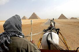A horse cart for tourist travels next to the Giza pyramids on the outskirts of Cairo.