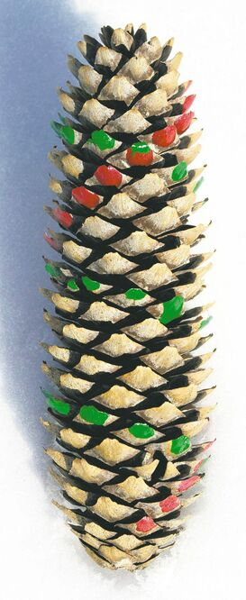 Dabbing colours on the bracis of a pine cone reveals a fionacci sequence at work.