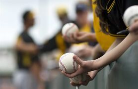 Pittsburgh Pirates baseball fans line up to get an autograph from Pirates pitcher John Holdzkom before an exhibition spring training baseball game against the Minnesota Twins, Friday, March 27, 2015, in Fort Myers, Fla. (AP Photo/Brynn Anderson)