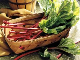 Fresh rhubarb is shown in a handout photo.With the snow barely off the ground, consumers might be surprised to see rhubarb in markets and grocery stores. THE CANADIAN PRESS/HO