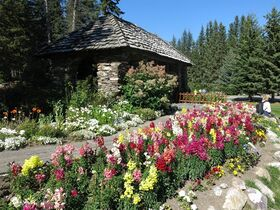 The Cascade of Time gardens, built in 1935 in Banff, Alta., is shown on September 13, 2013. THE CANADIAN PRESS/Bill Graveland