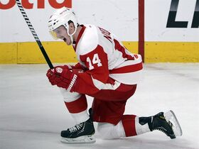Detroit Red Wings centre Gustav Nyquist celebrates his game winning goal in overtime in a 2-1 victory over the Montreal Canadiens in NHL action in Montreal on February 26, 2014. Nyquist is among the players to watch in the 2014-15 NHL season.THE CANADIAN PRESS/Ryan Remiorz