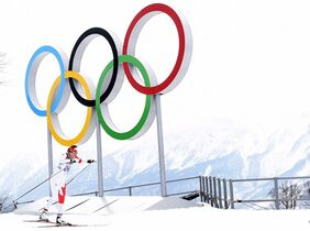 Canada's Alex Harvey competes in Sochi on Tuesday, February 11, 2014. THE CANADIAN PRESS/Nathan Denette