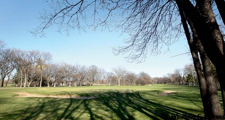 An auditors' report says the special operating agency that runs 12 civic golf courses — such as the Kildonan course (above) — is $8 million in debt.