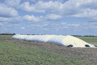Grain bags are a cost-effective solution to temporary storage needs, but they also pose the question of what to do with them once they've been emptied.