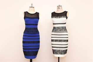 The two-tone dress, left, alongside an ivory and black version, made by Roman Originals, that has sparked a global debate on Twitter over what colour it is on display in Birmingham, England Friday, Feb. 27, 2015. It's the dress that's beating the Internet black and blue. Or should that be gold and white? Friends and co-workers worldwide are debating the true hues of a royal blue dress with black lace that, to many an eye, transforms in one photograph into gold and white. (AP Photo/PA. Joe Giddens) UNITED KINGDOM OUT: NO SALES: NO ARCHIVE: