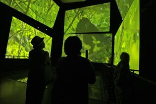 In this Friday, Sept. 26, 2014 photo, visitors watch an audio-visual installation titled, 'Panamarama' at The Biomuseo, designed by world-renowned architect Frank Gehry in Panama City. Located at the Pacific Ocean gateway to the Panama Canal, the Biomueso celebrates the isthmus' history not as a crossroads of trade but as one of the world's most-diverse eco-systems with more bird, mammal and reptile species than the United States and Canada combined. (AP Photo/Arnulfo Franco)
