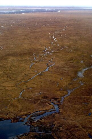 FILE - This July, 2001 aerial file photo shows the Coastal Plain of Alaska's Arctic National Wildlife Refuge. President Barack Obama says he will ask Congress to designate more than 12 million acres of the Arctic National Wildlife Refuge, including the Coastal Plain, as a wilderness area. The designation would seal the area off from oil exploration and give it the highest degree of federal protection available to public lands. (AP Photo/Al Grillo, File)