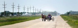 Members of a traditional Mennonite community travel by horse and buggy Friday afternoon.