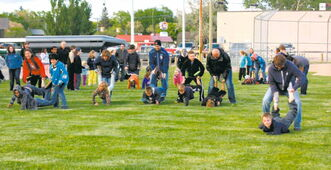Family races at last year's Knight of Celebration event at Norberry-Glenlee Community Centre.