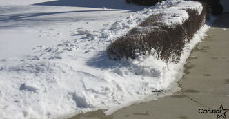 Freshly fallen snow can be thrown through a small shrub or piled near the edge of a flower bed.