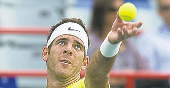 Juan Martin Del Potro deserves an apology, Raonic said.