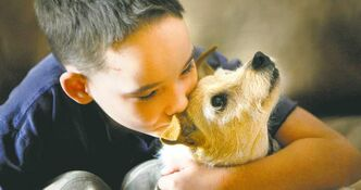 'Bingo will ask God if he could help the dogs on Earth... get good homes with loving new moms and dads and children who will love them as much as I love Bingo' — statement from Cole Hein, shown with Bingo in 2010, after the boy said goodbye to his dog on Tuesday