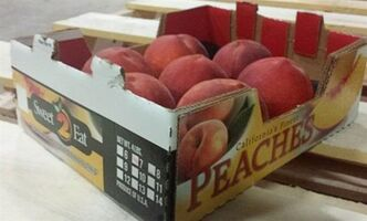 Sweet 2 Eat peaches are pictured in a photo released on Tuesday July 22, 2014. THE CANADIAN PRESS/HO, CFIA