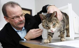 Winnipeg Humane Society executive director Bill McDonald with a cat an owner recently surrendered.