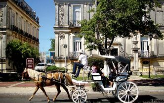 Horsedrawn carriage on Merida's Paseo de Montejo.