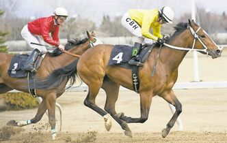 Christopher Ho pilots Lia Rocks to victory in the fourth race Sunday afternoon on opening day at Assiniboia Downs. Ho rode three winners on the day.