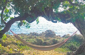 A hammock overlooking the sea at Jakes Resort at Treasure Beach.