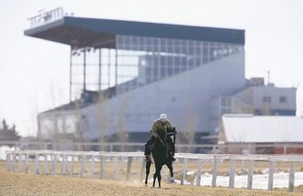 Jockey, Jerry Pruitt rides Slipper Sue around the training track at Assiniboia Downs, Wednesday, April 10, 2013. (TREVOR HAGAN/WINNIPEG FREE PRESS)
