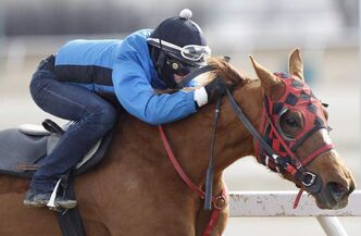 Both the Manitoba Jockey Club and the province are claiming victory in a court battle over funds raised through a levy on wagering at the track.