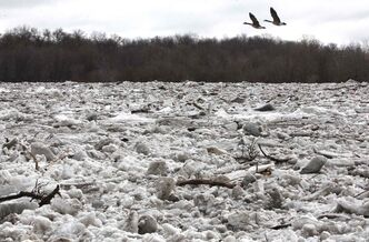 Ice clogs the Red River near Selkirk Park.
