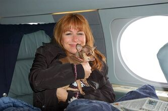 "This undated photo released courtesy Jill Zarin shows ""The Real Housewives of New York City"" actress Jill Zarin, aboard a private jet with her Chihuahua, Ginger in New York on their way to Los Angeles. Zarin had to take a cross-country business trip but 9-year-old dog Ginger was sick. She couldn't leave the 7-pound dog behind, so she hired a vet to go with them. JetsetVets will provide in-flight medical care, prepare animals for their trip, appply for travel documents, work with veterinary hospitals globally to ensure seamless transport and ground care. (AP Photo/Courtesy Jill Zarin)"