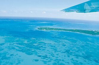 Belize is renowned for its stunning views of the Caribbean Sea.