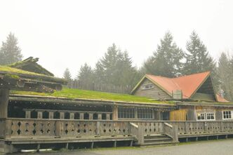 Goats typically graze on the roof of the Coombs Country Market on central Vancouver Island.