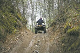 Brian Peterson/Minneapolis Star Tribune