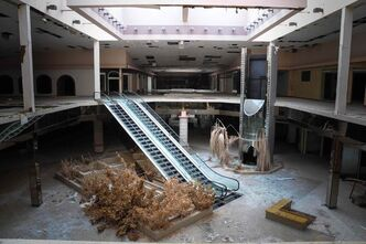 Dead trees and shrubbery are splayed across the skeleton of an abandoned mall in Cleveland, Ohio, April 2014.