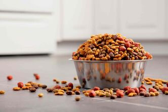 A quick scan of a pet food label can reveal much about the product and the company which makes it.