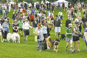 LEFT: Hundreds of dogs and their owners turned out in Assiniboine Park for Paws in Motion.