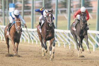 Photos by John Woods / Winnipeg Free Press