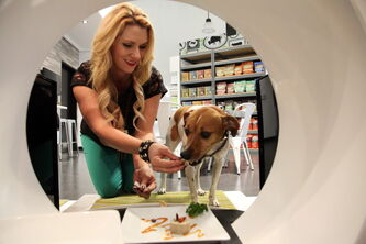 Store co-owner, Janene Zakrajsek feeding a dog a gourmet meal at the Pussy & Pooch Pet Lifestyle Center store in Beverly Hills, Calif.