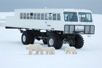 The tundra buggy takes visitors out for a day of polar bear viewing, near Churchill