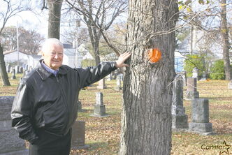Robert Filuk, executive director of Friends of Elmwood Cemetery Inc., stands by one of the elm trees at the cemetery that will be removed because of Dutch elm disease.