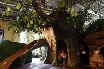 The giant oak tree exhibit will soon be gone as Manitoba Children's Museum undergoes a makeover.