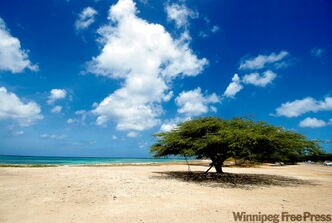 A serene beach scene in Aruba.