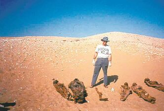 Michael Zimmerman on a 1993 trip to Egypt. His life-long study of mummies has shed light on some modern diseases.