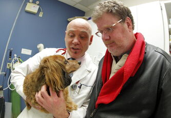 Doug Speirs' dog Zoe is weighed and checked out by Dr. Jim Broughton at Exclusively Cats on Corydon Avenue. Doug is very concerned about Zoe, who at 19 lbs is 36 per cent overweight.