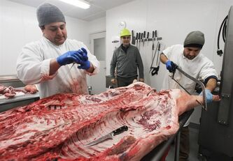 "In this Tuesday, Jan. 22, 2013 photo, Robin Morris, center, watches Frank Pace, left, and Florin Ungureanu, butcher a pig in Waitsfield, Vt. Vermont officials are exploring a new round of value added agriculture, hoping their livestock industry might take advantage of the burgeoning world of charcuterie. ""You can buy a pig for $3 a pound. You turn it into cuts and you'll get $4, $5, $6 a pound. Turn it into bacon and you're getting $8 maybe $9 a pound. Turn it into cured products, the world's your oyster,"" said Robin Morris, founder of the Mad River Food Hub, an incubator for new food businesses that is adding rooms for producers to dry cure meats such as salamis, prosciuttos and sopressatas. (AP Photo/Toby Talbot)"