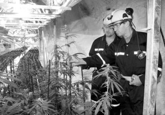 Then federal health minister Allan Rock (right) and Prairie Plant Systems CEO Brent Zettl inspect the medicinal marijuana crop in the Trout Lake mine in Flin Flon in 2001.