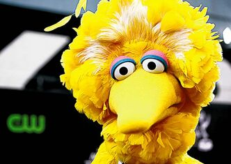 Matt Sayles / The Associated Press