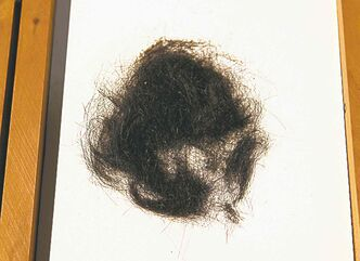 MCT archive