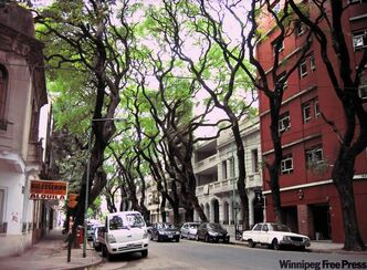 The shady streets of Palermo, a trendy barrio in Buenos Aries.