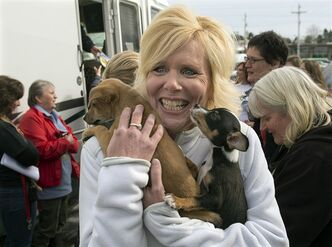 Sandra Clark carries two little dogs that arrived in Halifax along with many others on Thursday, Feb. 14, 2013. The animal protection organization, Animal Rescue Corps, transported around 50 dogs to the Maritimes from a crowded shelter in California. The animals will be fostered and adopted by local families. THE CANADIAN PRESS/Andrew Vaughan