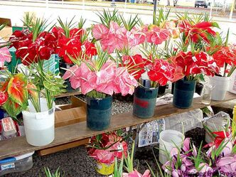 Flowers at Hilo Farmer's Market on the Big Island.