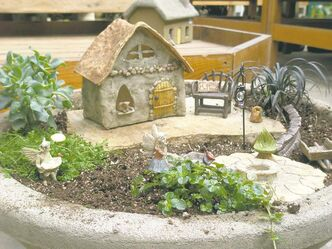 Fairy gardening will delight gardeners young and old. Create miniature scenes with intricate details. Perfect for small space gardening.