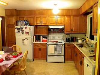 The kitchen before renovation is dated.